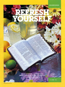 mormonad-refresh-yourself-1118306-gallery