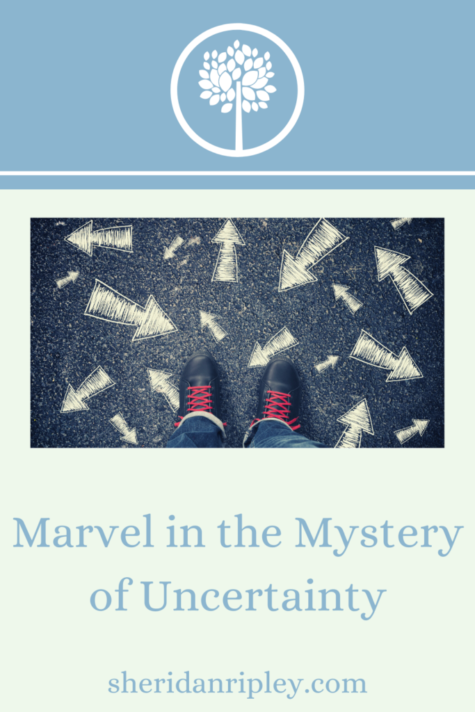 10. Marvel in the Mystery of Uncertainty