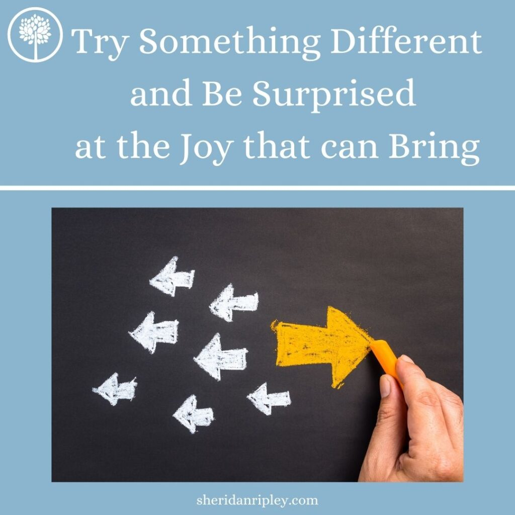 Be Willing to Try Something Different and Be Surprised at the Joy that can Bring